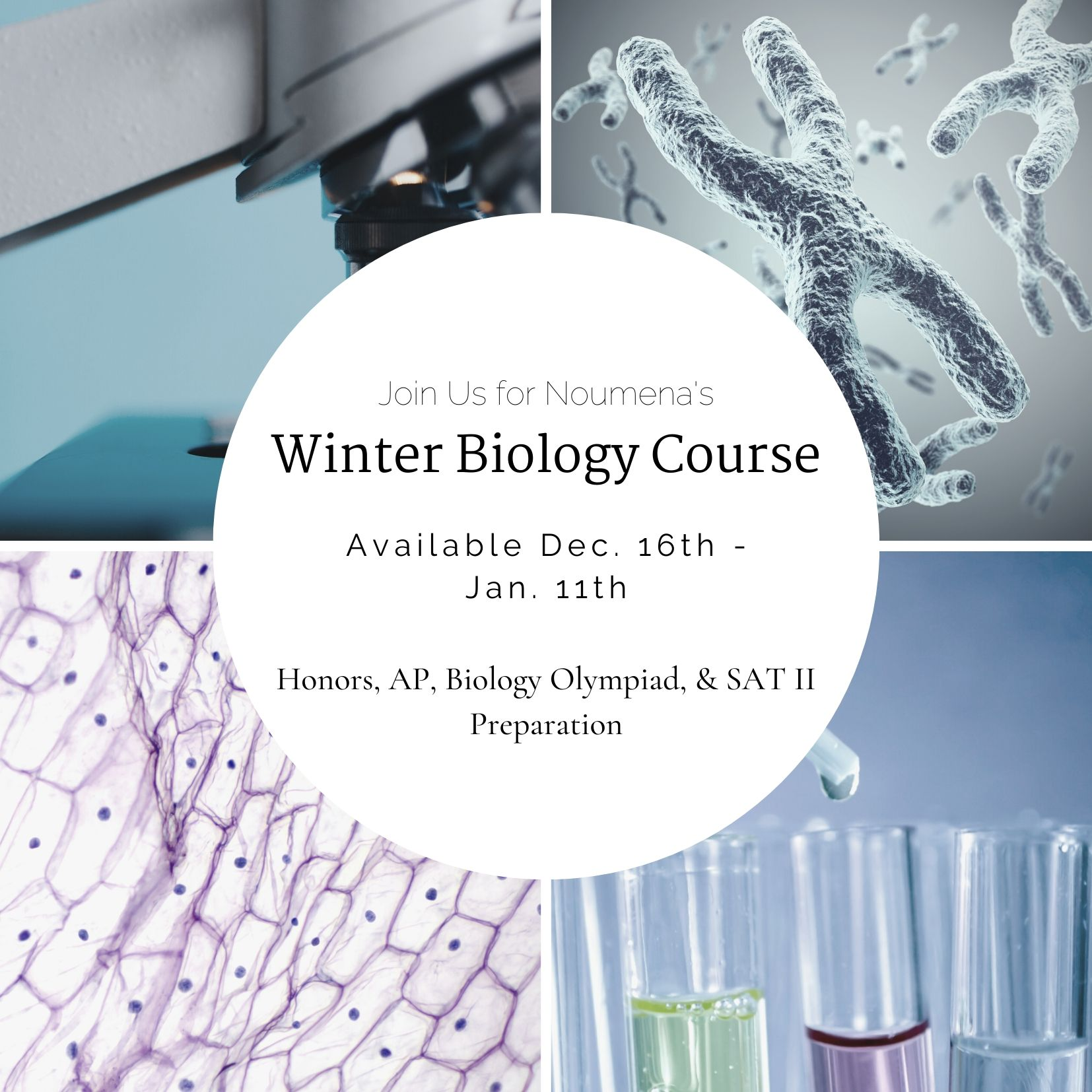 2019 Noumena Winter Biology Program